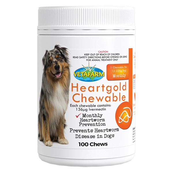 Product_Heartgold-Chewable-100-Chews