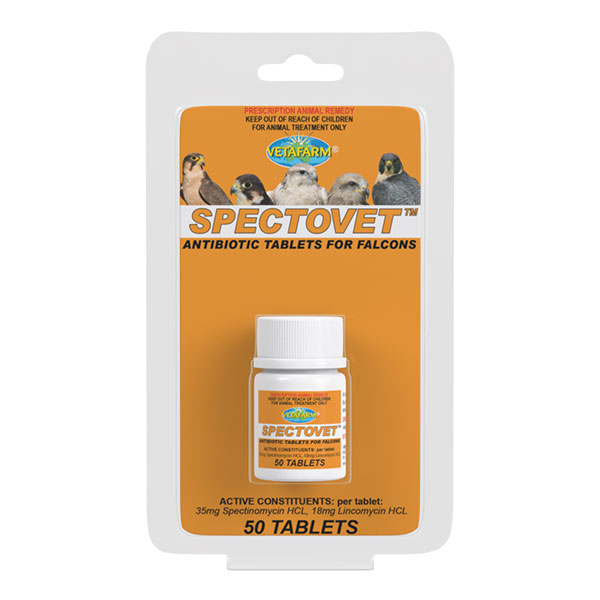 Product_Falcon-Spectovet-50-Tablets